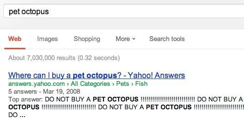 google,pets,yahoo answers,octopus