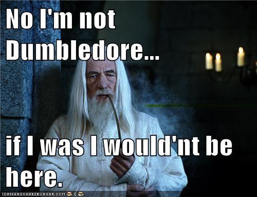 resurrected ian mckellen dumbledore gandalf smug - 7053467904