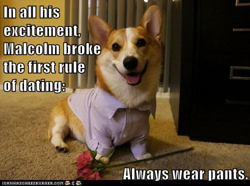 dogs,FAIL,corgi,no pants,dating,Valentines day