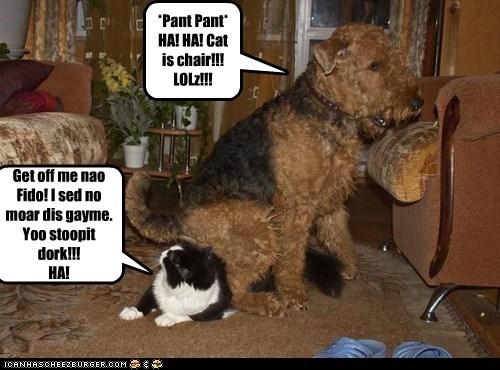 *Pant Pant* HA! HA! Cat is chair!!! LOLz!!! Get off me nao Fido! I sed no moar dis gayme. Yoo stoopit dork!!! HA!