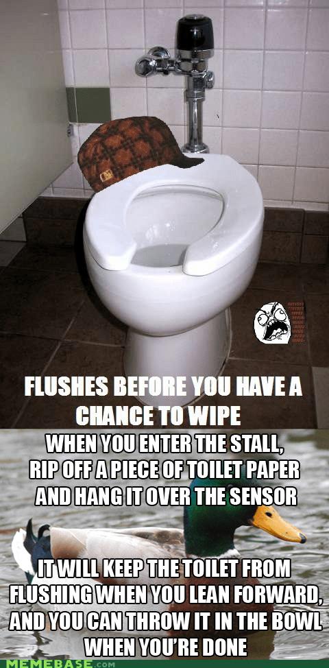 Actual Advice Mallard re-frames toilets - 7053894912