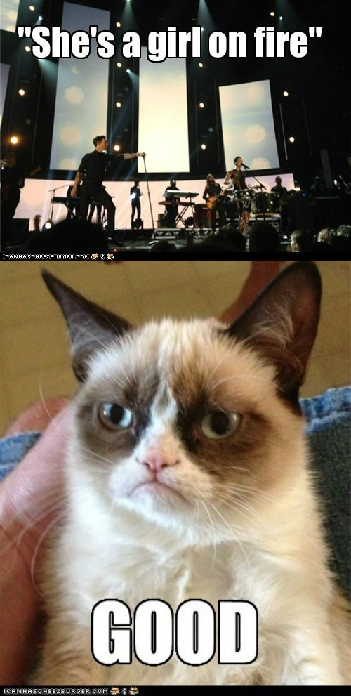 alicia keys Grammys Grumpy Cat maroon 5 - 7053948928