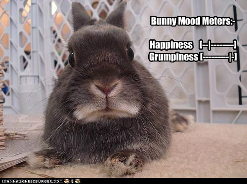 Bunny Mood Meters:- Happiness [--|--------] Grumpiness [---------|-]