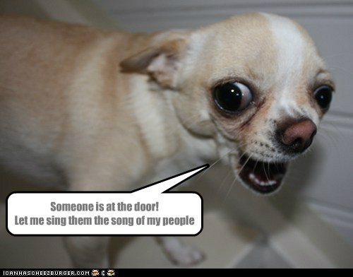 Someone is at the door! Let me sing them the song of my people