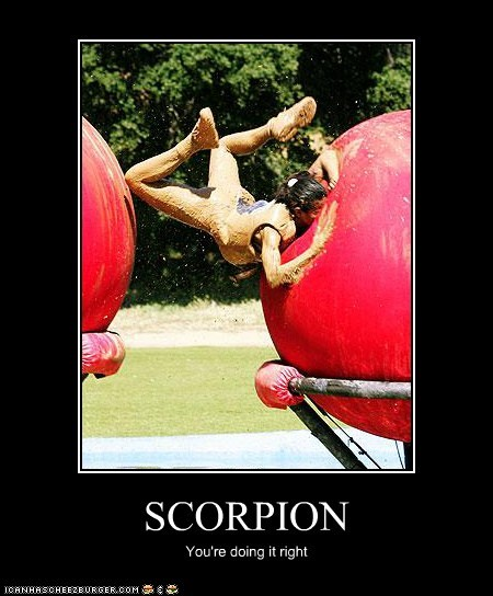 SCORPION You're doing it right