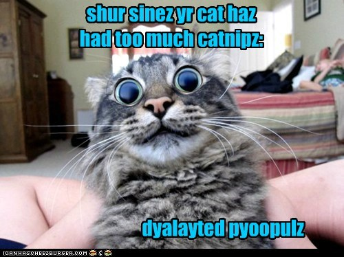 shur sinez yr cat haz had too much catnipz: dyalayted pyoopulz