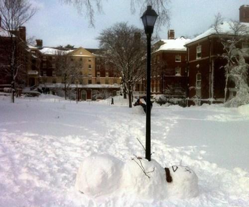 dead snowman - 7055380224