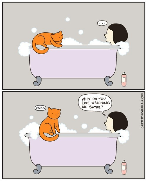 Awkward Cats bath bathe naked - 7055431168