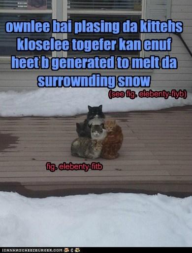 Cheezburger Image 7055461632