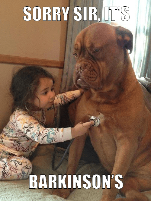 dogs Playing Doctor g rated Parenting FAILS - 7055485184