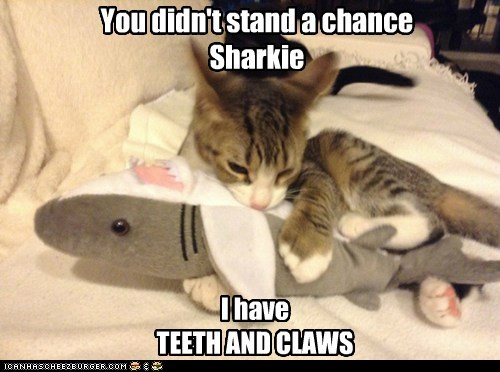 You didn't stand a chance Sharkie I have TEETH AND CLAWS