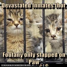 Devastated Inmates thot  Foofany only slapped on *Paw*