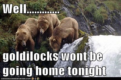 falling,bears,cliff,goldilocks