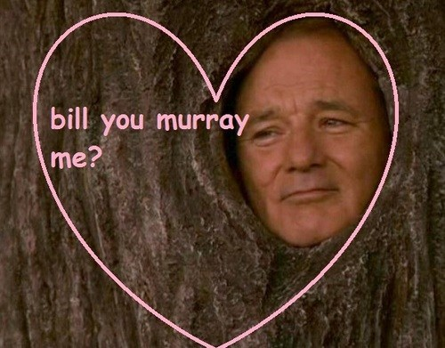 bill murray,actor,valentine,funny,Valentines day