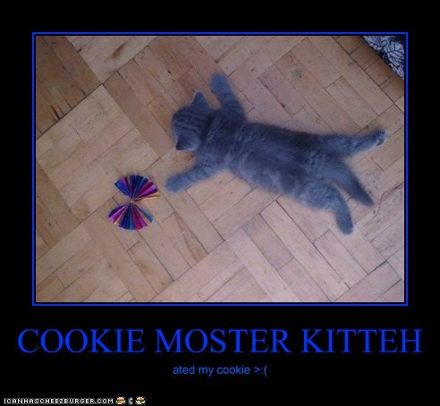COOKIE MOSTER KITTEH