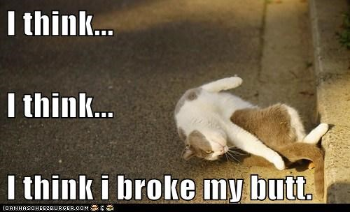 butt,broke,Cats