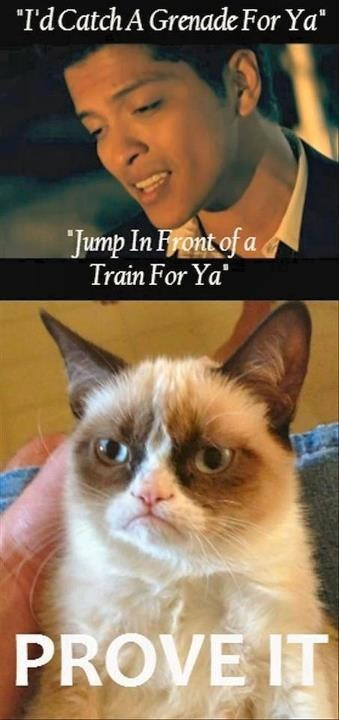 lyrics,Grumpy Cat,bruno mars