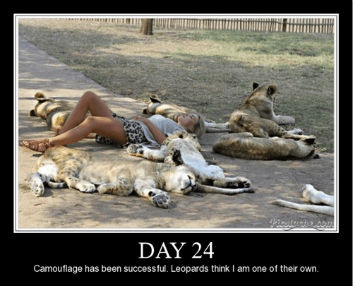 Not so demotivational poster of a woman wearing cheetah shorts and blending right in with the pack.