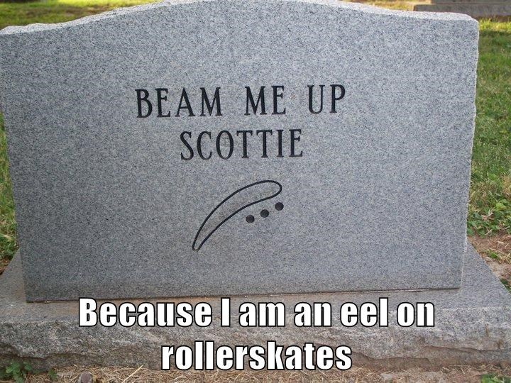Because I am an eel on rollerskates
