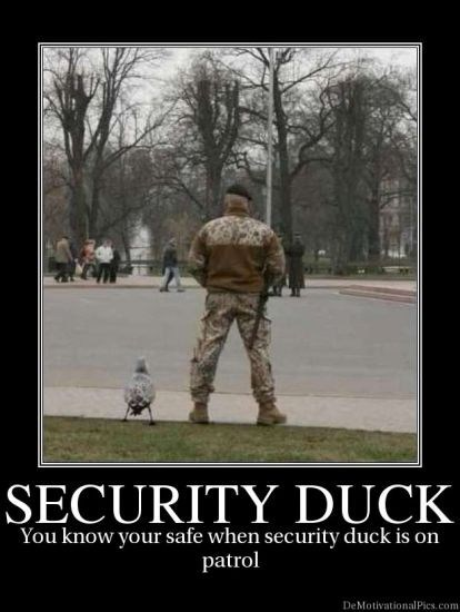 Thank Goodness for That Duck