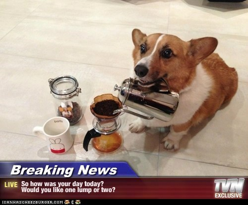 Breaking News - So how was your day today? Would you like one lump or two?