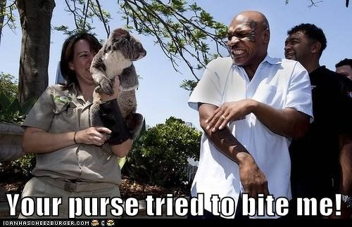 biting purse koalas scared mike tyson