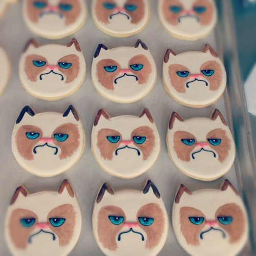 cookies,Grumpy Cat