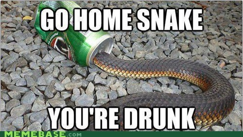go home you're drunk,drunk,snake