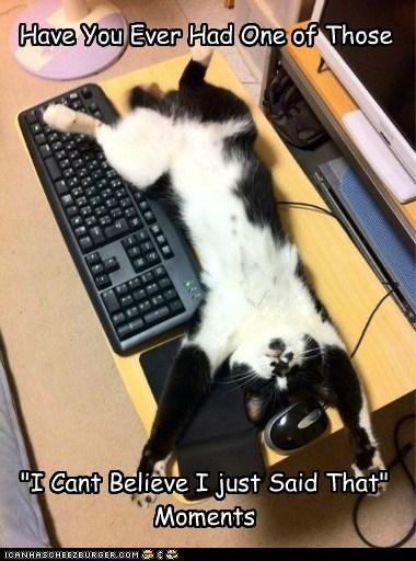 cat computer Cats - 7063350528