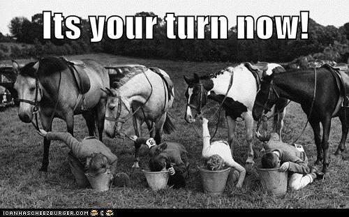 kids buckets horses - 7063652608