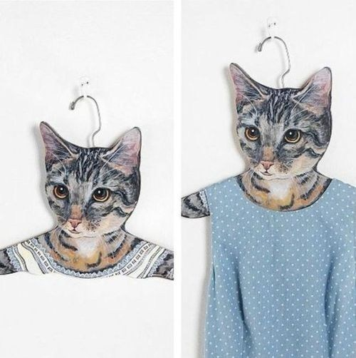 hangers shut up and take my money Cats poorly dressed g rated - 7063949824
