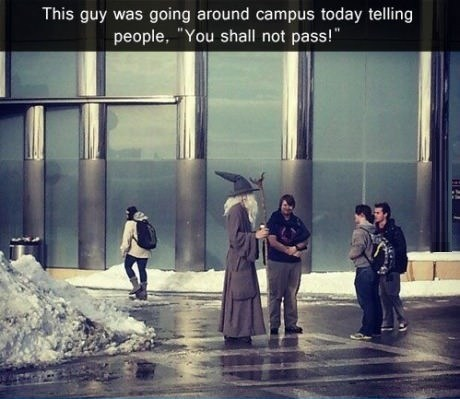 Lord of the Rings,gandalf,college