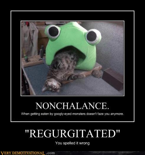 regurgitated cat sleeping - 7064320256