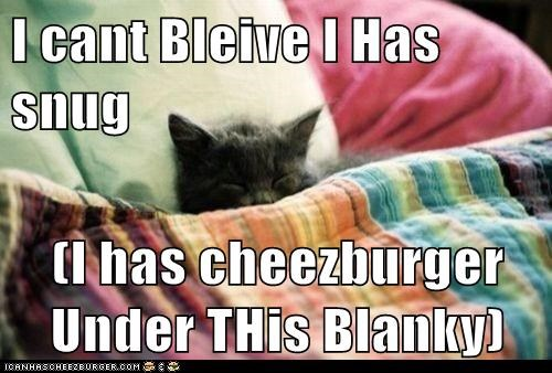 Cheezburger Image 7064915456
