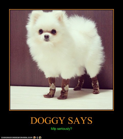 DOGGY SAYS