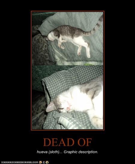 DEAD OF