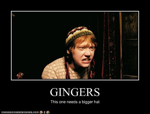 GINGERS This one needs a bigger hat
