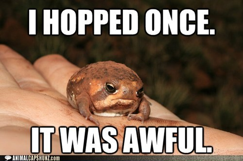toads,hopping,it was awful,grumpy