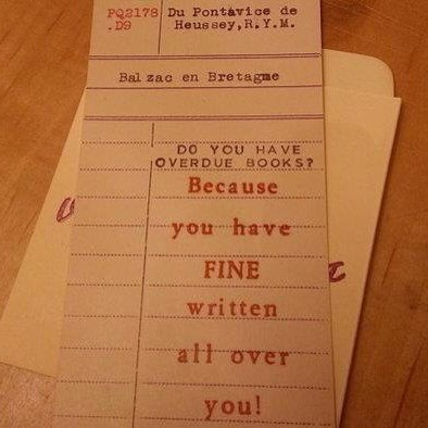 pickup line punchcard fine corny double meaning librarian - 7066655744