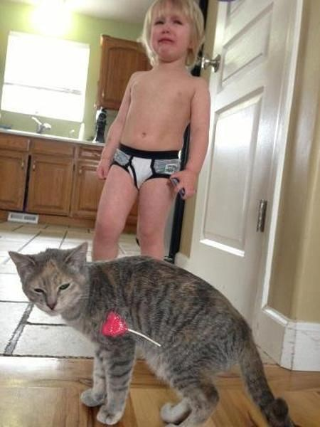 suckers,lollipops,Cats,underwear,g rated,Parenting FAILS