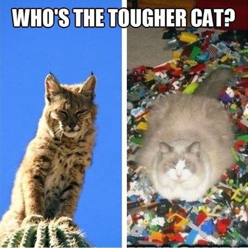 lego cactus bobcat Cats - 7066923776