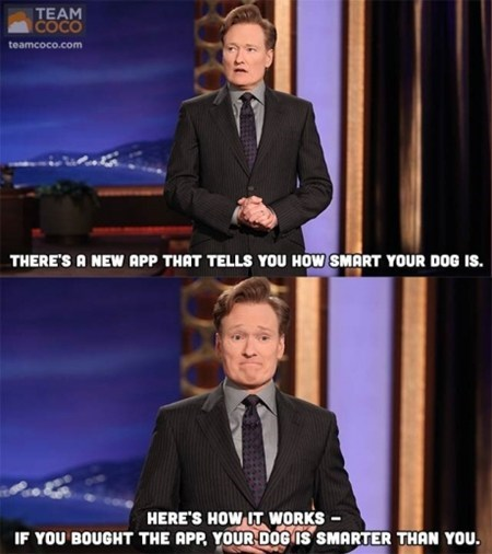 TV,dogs,App,conan o' brien