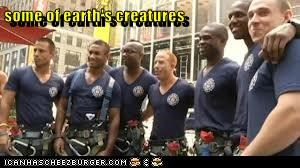 some of earth's creatures
