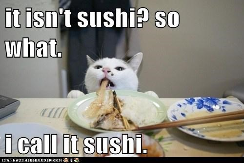 sushi,food,noms,Cats