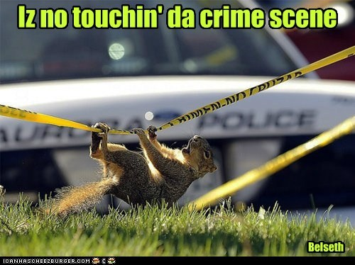 Iz no touchin' da crime scene Belseth
