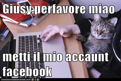 Cheezburger Image 7069798400