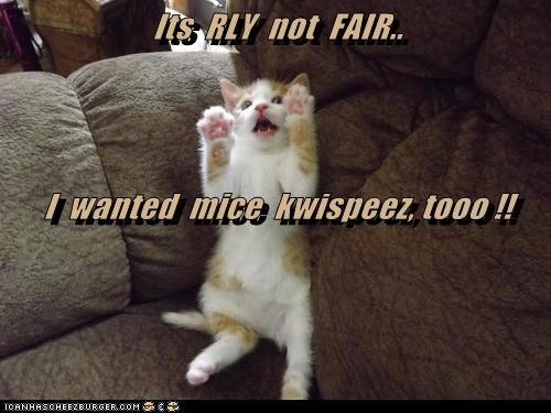 Its  RLY  not  FAIR.. I  wanted  mice  kwispeez, tooo !!