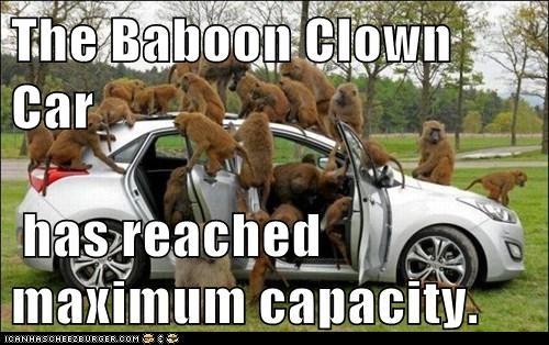 The Baboon Clown Car has reached maximum capacity.