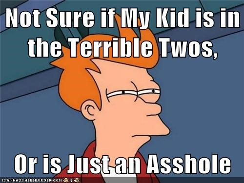 Not Sure if My Kid is in the Terrible Twos, Or is Just an Asshole