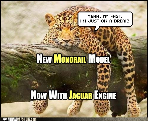 jaguars,monorail cat,fast,break